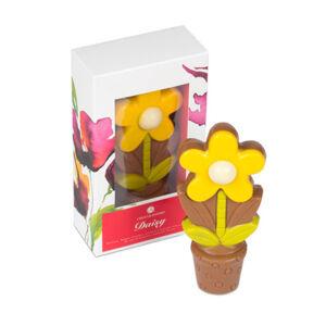 Chocolissimo - Sedmikráska s květináčem - dáreček k svátku 70 g